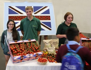 Antler Languages students talking to English tomato growers