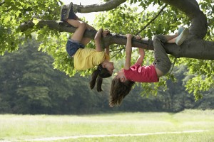 Girls playing in a tree
